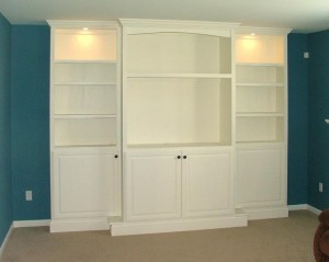 Entertainment Center /Shelving Unit